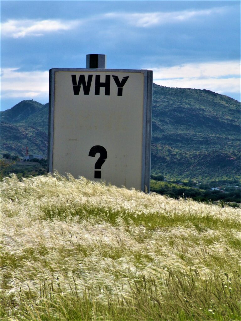 poster with a question why